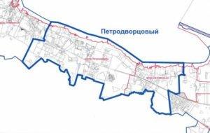 Химчистка матрасов в Петродворцовом районе