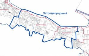 Химчистка ковров в Петродворцовом районе