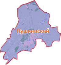 Химчистка ковров в Пушкинском районе