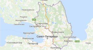 Химчистка ковров в Всеволожском районе